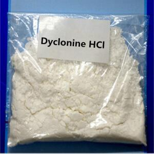 China 100% pass customs Topical Anesthetic Drugs 99.9% Puirty Dyclonine Hydrochloride / Dyclonine HCl on sale
