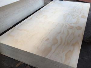 China Pine veneer plywood for export to Albania,kuwait,qatar,bahrain,Iraq.UAE on sale