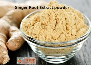China Remove Toxins Natural Pigment Ginger Root Powder Extract Gingerols 5% 6% 15% on sale