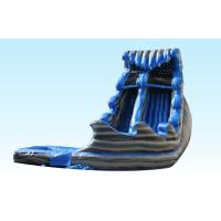 Monster Inflatable Big Water Slides For Kids , Water Inflatable Slide Blue And Gray Color