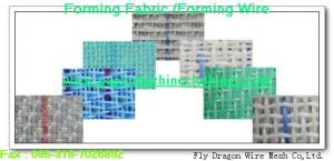 China forming mesh/forming wire/forming fabric/forming screen on sale