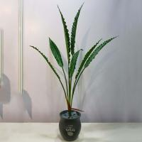 China High Imitation Artificial Bird-Nest Fern Branches 85 CM for Home Decoration on sale