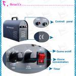 L'air commercial en céramique de générateur de l'ozone de forte concentration épurent le stérilisateur