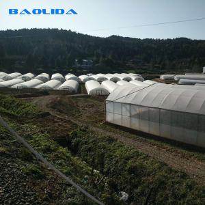 China Farm Tunnel Polyethylene Film Greenhouse / Clear Plastic Greenhouse For Various Vegetables on sale