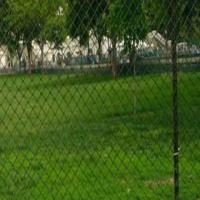 China Poultry Netting Fence on sale