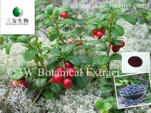 China Vaccinium vitis-ideea ,15%, 25% Anthocyanins,Deep Violet Powder on sale