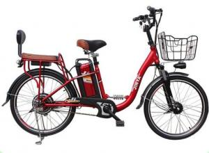 China new  design 24 inch 48v adult 2wheeled  bike,electric from china on sale