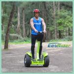 China Motorized Waterproof Most Popular Sports Segway Off Road With Handle wholesale