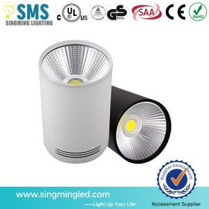 China New design 15w surface mount LED downlight cob 85-265V ceiling downlight on sale