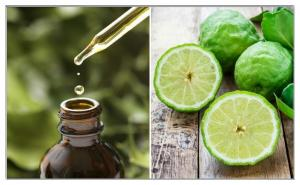 China natural essential bergamot oil from China, Citrus bergamia Essential oil for perfume on sale