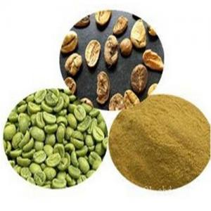 China GMP factory Supply Weight Loss Natural Green Coffee Bean Extract Powder Chlorogenic acid on sale