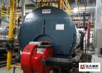 Professional Gas Oil Steam Boiler used in Garment Factory for Ironing