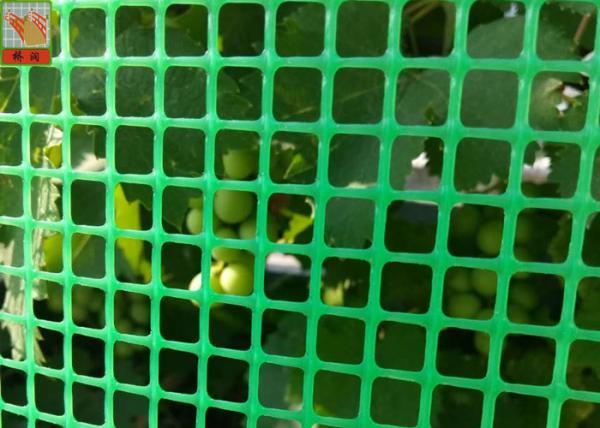 Green Plastic Garden Fence Mesh 1m