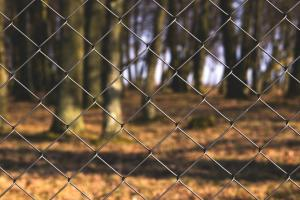 China 2.4mx10m Chain Link Fence,Hot Dipped Galvanized Chain-Link Fence on sale
