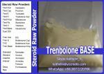China Hormone Raw Powder Trenbolone Base / Tren Anabolic Steroid For Bodybuilding  10161-33-8 wholesale