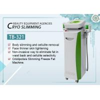 China 5 Handles Cryolipolysis Fat Freeze Slimming Machine For Skin Tightening / Face Lifting on sale