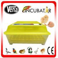 Automatic 48 Egg Incubator/48 Eggs Mini Incubator/48 Chicken Egg Incubator