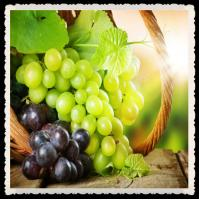 organic grape seed extract 95%