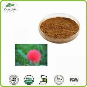 China 10:1 natural Albizia Flower albizia julibrissin extract on sale