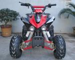 China Automatic Clutch Youth Racing ATV 110cc With Front Drum Brake 60km/H wholesale