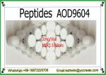 Injectable Peptides Fragment AOD9604 Powder For Fat Loss CAS: 221231-10-3