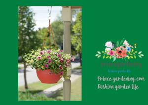 China Self Watering Hanging Flower Baskets / Hanging Baskets For Plants on sale