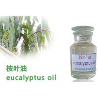 Medicinal essential oil ,Eucalyptus oil,Herbs Extract,herbal extract
