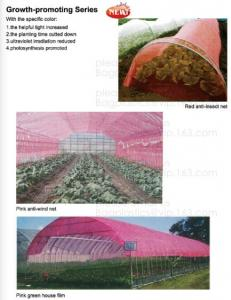 China 100% Biodegradable mulch, biological degradation processes, fruit box,flower pot,jute cloth,cultivating bag,jute net,net on sale