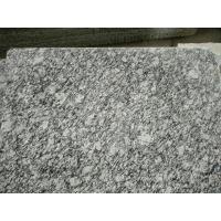 Guangdong Silver Grey Granite Tiles Sea Wave Flower Granite Floor Tiles Granite Slabs