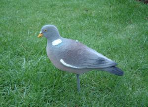 flock pigeon decoys - flock pigeon decoys for sale