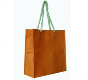 Quality Environmental Non Woven Polypropylene shopping bags for sale