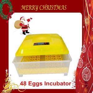 China Christmas Promotion Price Durable Quail Eggs Incubator Fully Automatic 48 Egg CE Marked on sale