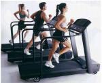 Sistema de cuerpo entero de 19 diversos ejercicios funcionales el estante