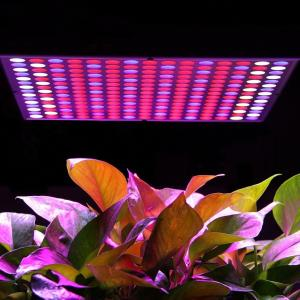 China 45W Hanging LED Panel Grow Light / Full Spectrum Grow Lights With PC Materials on sale