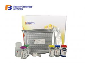China Androstenedione Asd Human Elisa Kit 96 Wells Highly Sensitive For Research on sale