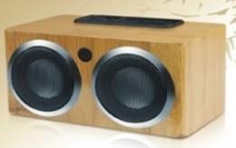 China Bamboo SD Card Reader Speaker (SA888) on sale