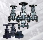 API 602 forged steel valve cryogenic GATE VALVE BB WB PSB LF2 F316 INCONEL 625 F51 F91 BW SW ENDS