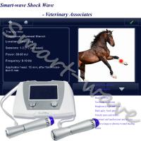 China Veterinary Medical Equine Shockwave Therapy Machine For Patellar Tendinopathy on sale
