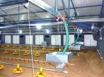 Poultry Equipment , Stockbreeding Machine , Poultry cellulose Cooling Pad NorthHusbandry