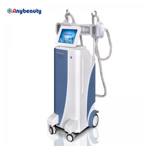 China Perda de peso da máquina do emagrecimento de Cryolipolysis do Shaper do corpo com membranas on sale