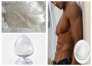 China 99% Purity Bodybuilding Steroid Hormone Powder Testosterone Base 58-22-0 on sale