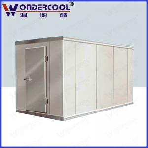 Commercial Customize Ice Storage Freezer For Meat Fish Cream Vegetable Cold Room