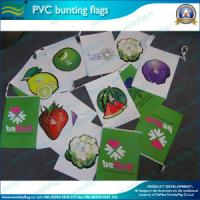 China Flags Bunting / Custom Flag Bunting, PE Bunting Flags, PVC Bunting Flags on sale