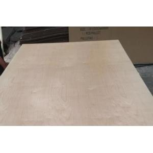 White Birch UV Coated Plywood Poplar / Eucalyptus Core Type 2.5 - 20mm Thickness