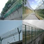 China Razor Concertina Wire Packed With Pallet / High Tensile Barbed Wire wholesale