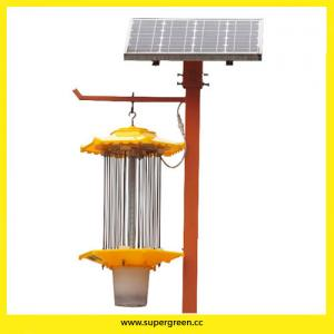 China Patented Product Renewable Energy Mosquito Killer Solar Pest Trap Light on sale