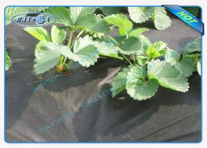 China Water Permeable Garden Fabric Weed Control Weed Suppressant Membrane on sale