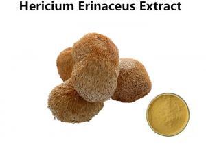 China Anti - Oxidant Lion'S Mane Mushroom Extract , Pharmaceutical Organic Mushroom Powder on sale