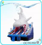 China Economical Inflatable commercial Water Slides supplied by ANXIN factory wholesale