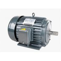 China Squirrel Cage Asynchronous AC Electric 3 Phase Induction Motor For Driving on sale